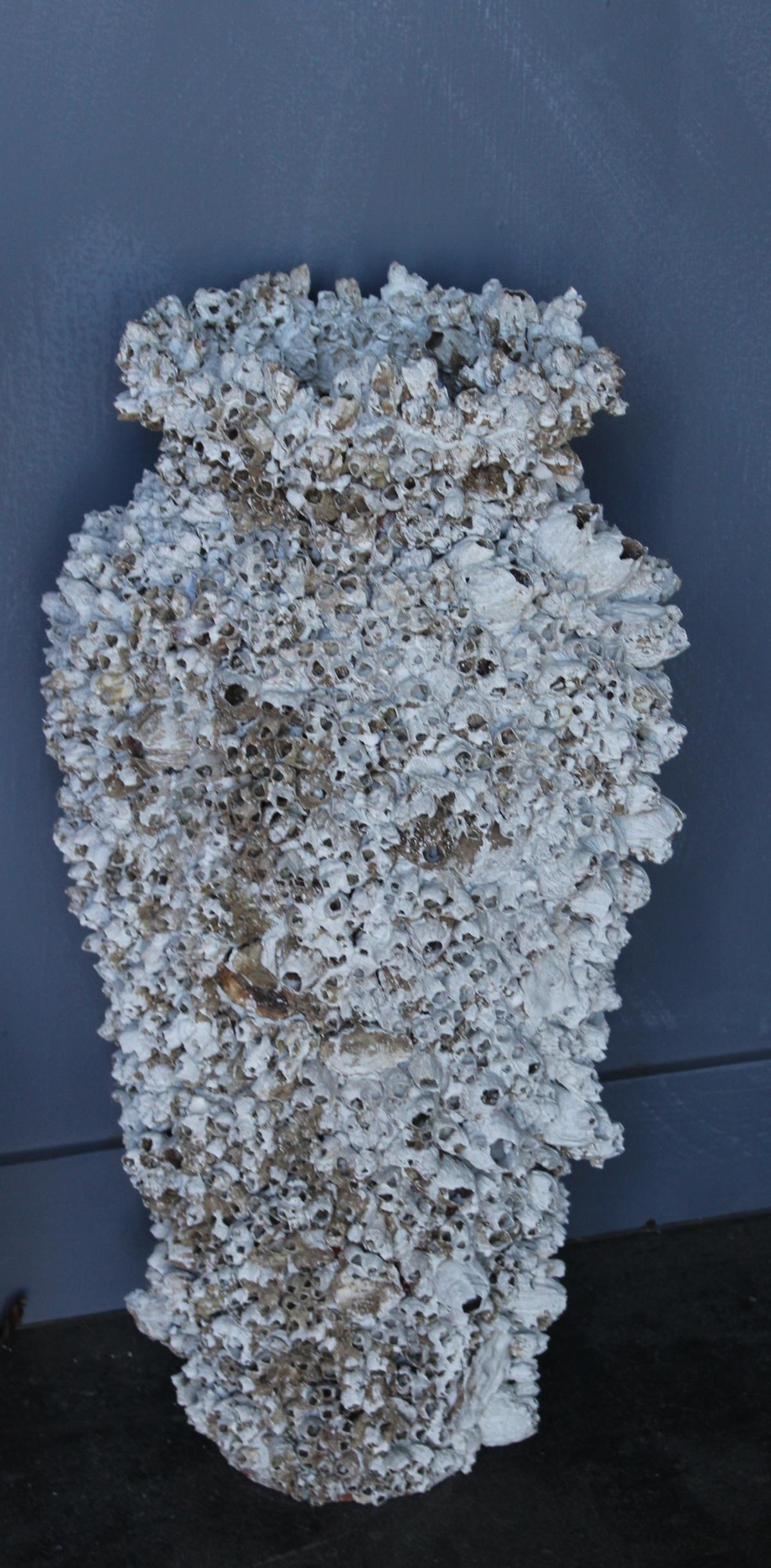 barnacle vase 042013