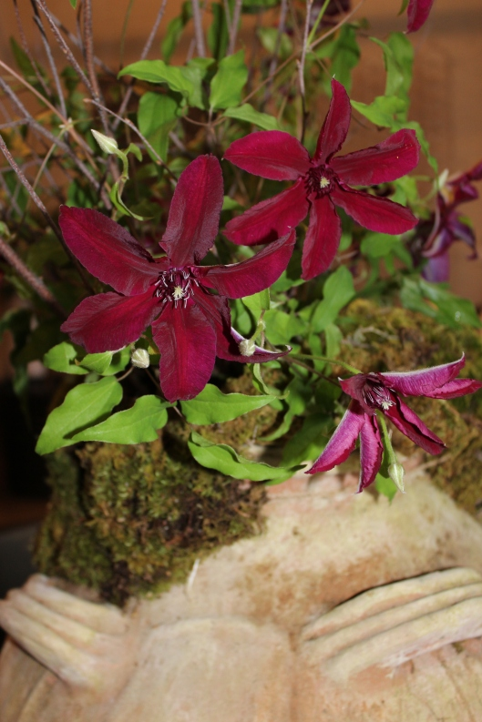 clematis + moss with birch twigs in aged terra cotta french urn (check out the Belmont Foundation for Education - Bid for Good - this urn is 'up for bid')