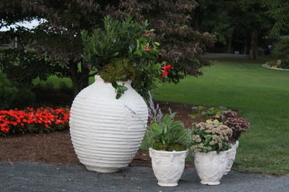 limestone collection at elmbanch