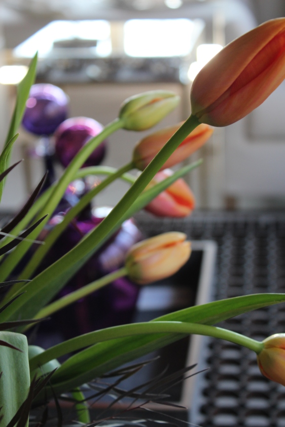 french-tulip-hot-dark-5-artefacthome.