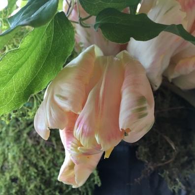 floral-cindye-spring-dinner-party-14