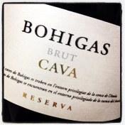 large-bohigas-brut-reserva-cava-nv