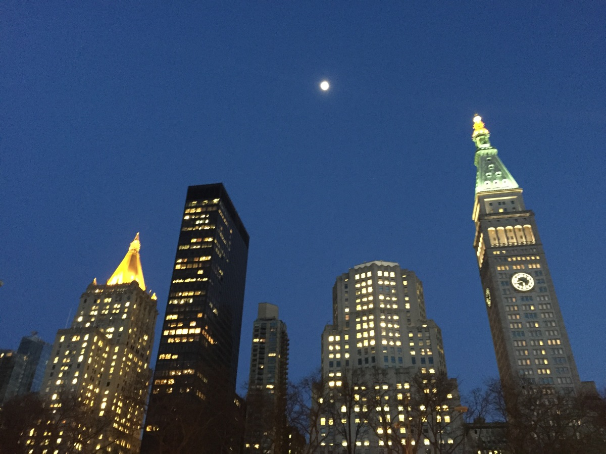 chelsea-moonlight