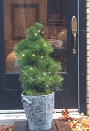 pine-lights-chinese jar-pennoyer newman@artefacthome