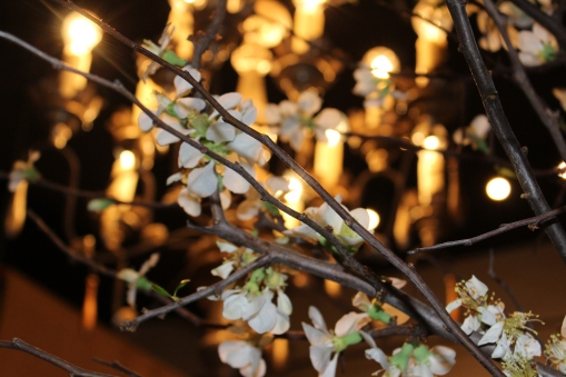 spring branches-light@artefacthome