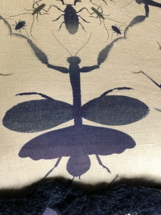textile-pillow-mantis in indigo with fringe-artefacthome
